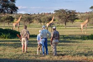 tswalu kalahari walking safari