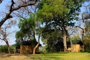 upper zambezi zambia mutemwa lodge
