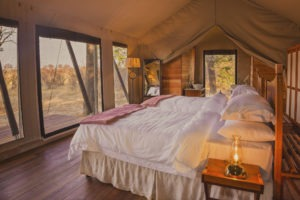 verneys camp hwange bedroom