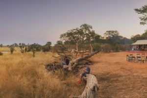 verneys camp hwange main area pano