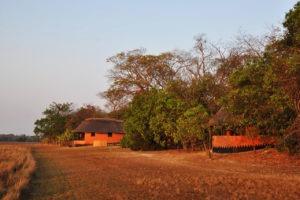 wasa lodge kasanka rooms