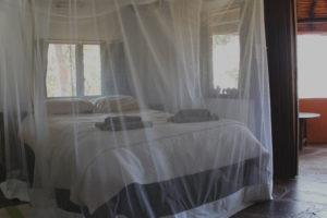 wasa lodge kasanka rooms interior