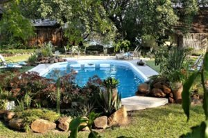 waterberry lodge livingstone pool