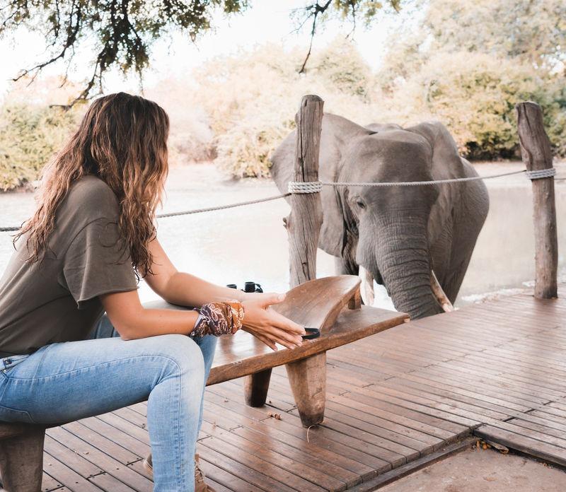 safari with gesa and frank Gesa Neitzel and elephant
