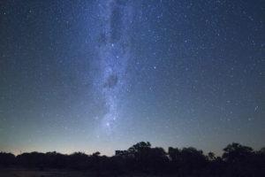 Greater kruger national park stars
