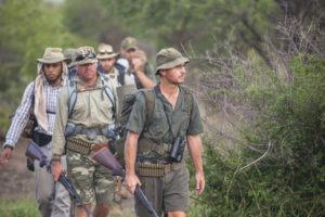 Greater kruger national park tracking