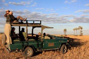Makgadikgadi Botswana horse riding game drives