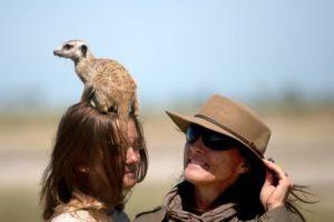 Makgadikgadi Botswana horse riding meerkat on head