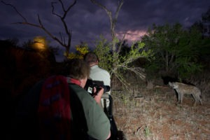 Makuleke Kruger National Park Night Game Drive