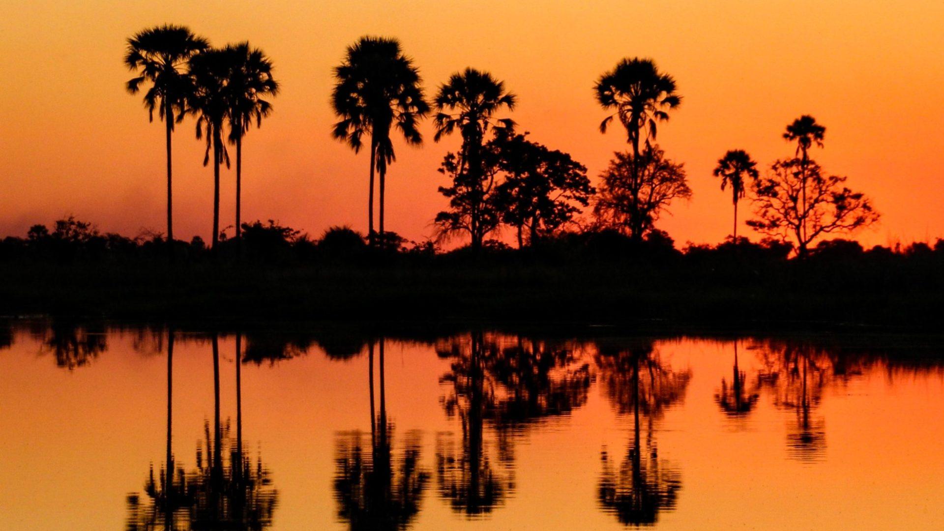 Nothern Botswana Chobe Aamzing Sunset