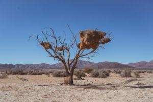 Southern Namibia landscape photography