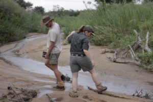Training Gesa Neitzel Students Tracking