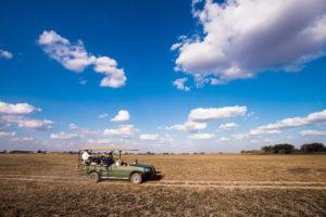 West Zambia Busanga Plains game drive