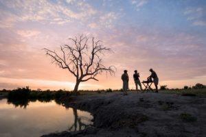 Zimbabwe hwange african sunset