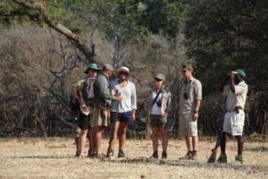 camp zambezi mana pools interpret