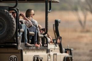 golden africa safaris game viewing