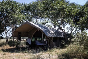 golden africa safaris tent day
