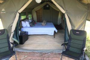 golden africa safaris tent outside