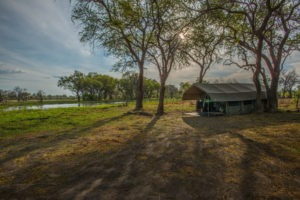 golden africa safaris tent view