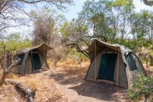 lowveld trails timbavati tents