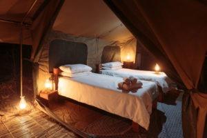 nkozi camp south luangwa beds