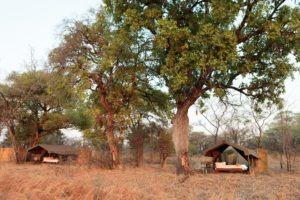 nkozi camp south luangwa tents outside