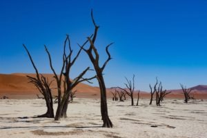 southern namibia deadvlei