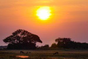 west zambia sunset
