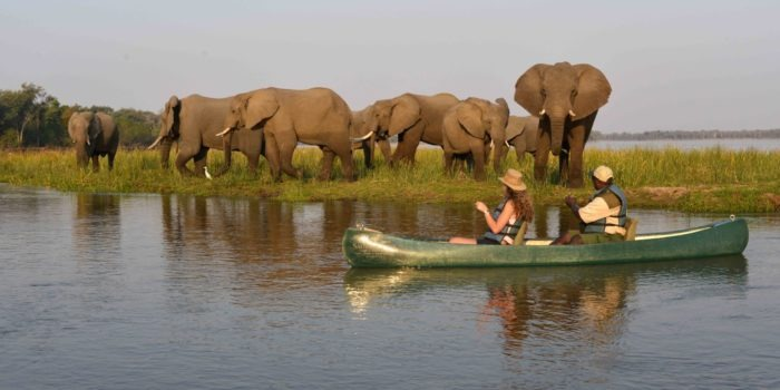 zambia lower zambezi sausage tree camp canoe