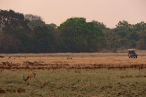 zambia luangwa valley landscape game drive africa