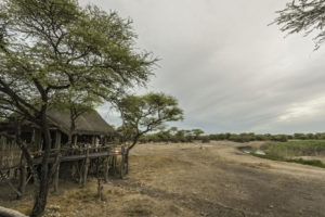 Onguma Tree Camp 0354