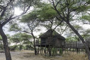 Onguma Tree Top 0511