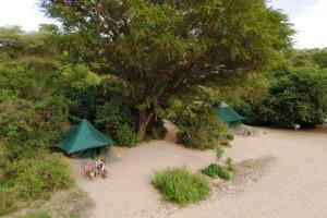 manyara green camp tanzania aerial tents