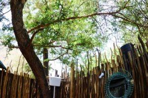 manyara green camp tanzania bathroom