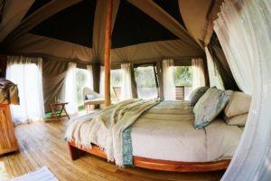 manyara green camp tanzania bedroom