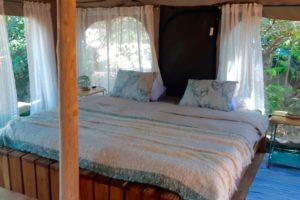 manyara green camp tanzania double bed