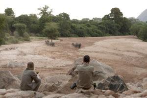 manyara green camp tanzania elephant rocks