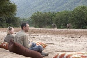 manyara green camp tanzania guests elephant river