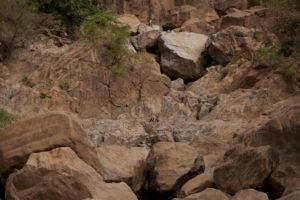 manyara green camp tanzania guests rocks