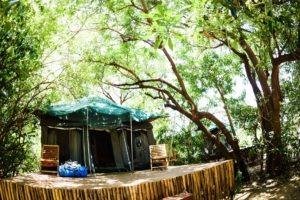 manyara green camp tanzania room exterior