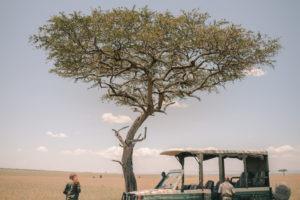 Blog Serengeti9