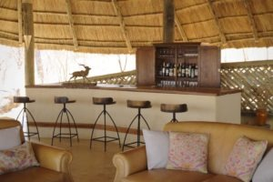 ikuka camp ruaha bar