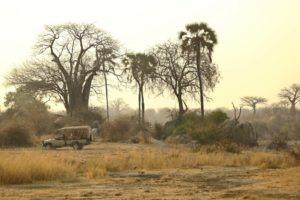 ikuka camp ruaha landscape
