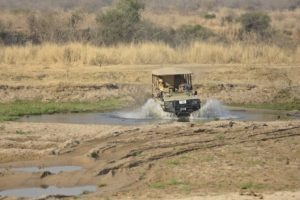 ikuka camp ruaha river crossing