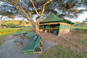 naabi green camp dining tent