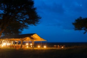 serengeti safari camp night