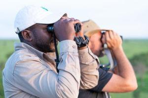 wayo walking camp serengeti birding