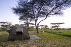 wayo walking camp serengeti tent view