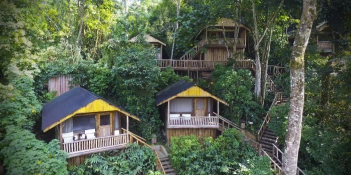 buhoma lodge uganda rooms aerial