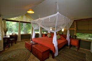 ishasha wilderness camp uganda double